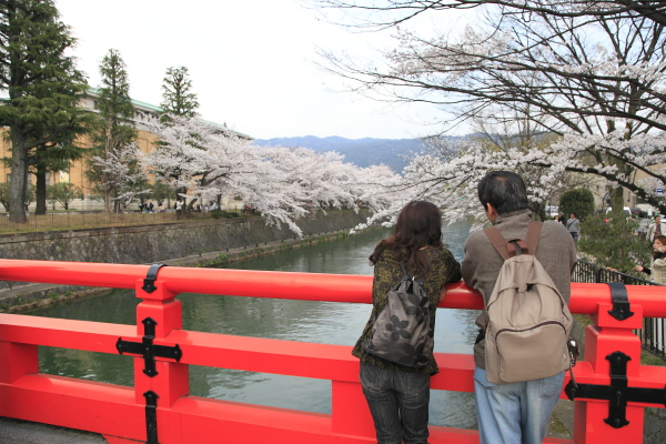 kyoto_2012ms_066.JPG